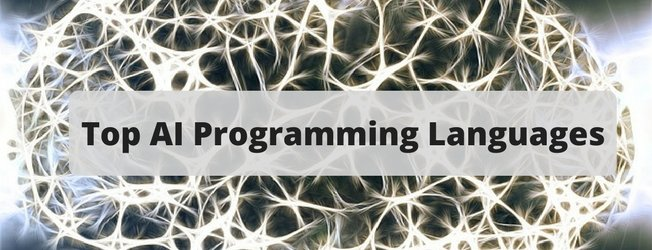 Top AI Programming Languages