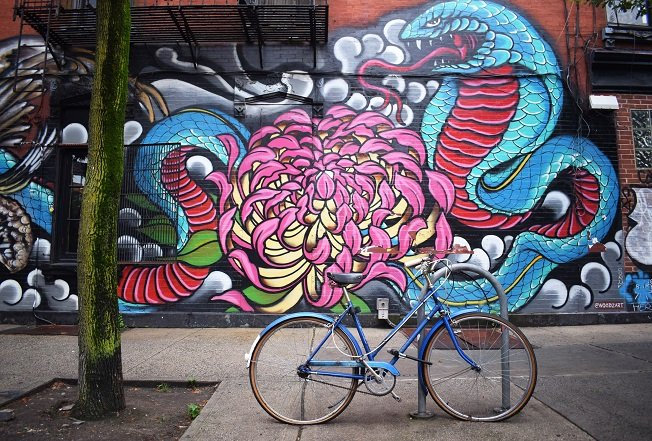 bicycle-flower